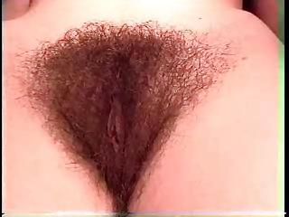 Free HD Granny Tube Hairy